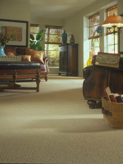 Carpet Flooring Champaign IL